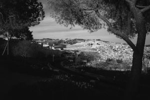 Mount of Olives from Mount Zion