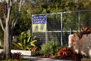 Miami Beach Botanical Gardens, Raymond Jungles Landscape Architect