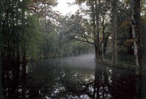 South Carolina 3