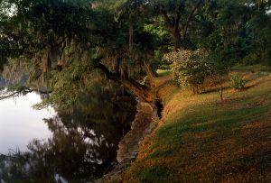 South Carolina 5