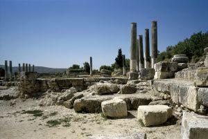 Forum in Samaria